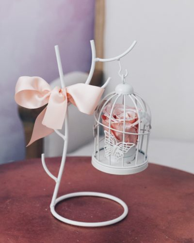 Rose in a Cage